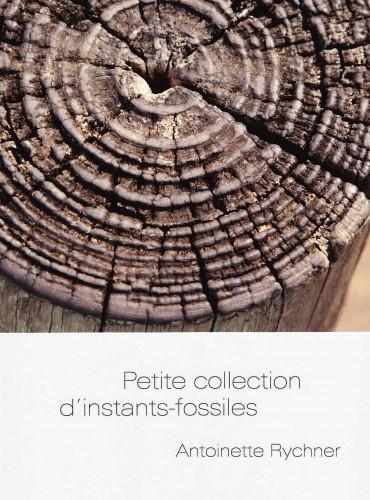 image du livre Petite collection d'instants-fossiles